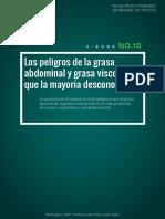 Dietaryplus. Los Peligros de La Grasa Abdominal