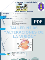 TALLER (alteraciones de la visión) (1).pptx