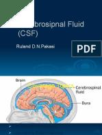 LabTest Neuropsi 26 Feb2010 - Dr. Ruland