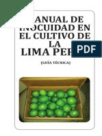 Manual BPM de Lima Persa Diagramacion Definitiva 4