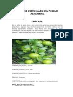 plantas medicinales del pueblo ashaninka