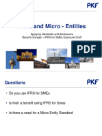 SMEs and Micro Entities.pdf
