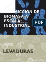 produccion de biomasa.ppt