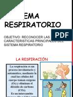 Sistema Respiratorio Correcto