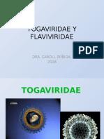 ALFAVIRUS Y FLAVIVIRUS.pptx
