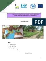 Rapport Installation Et Suivi Des Pepinieres FAO (2) (6)