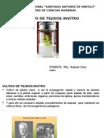 Cultivo de Tejidos Invitro.