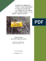 eia-expost.pdf