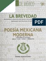 Revista Biblioteca de México 85-86 (La brevedad).pdf