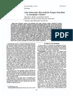 Production of Vesicular Mycorhyzal Fungus