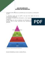 Guia de Ejercicios- Sistemas de Informacion
