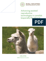 9.1. Advancing Assisted Reproductive Technologies in Camelids Experimento 5 TAN SOLO