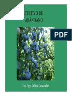 2-Clase Arandanos Optativa