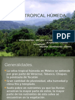 Exposicion Selva Tropical Húmeda
