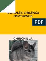 ANIMALES CHILENOS NOCTURNOS..2.pptx