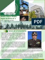 ESTRATEGIAS POLICIALES boletin_interno 2016.pdf