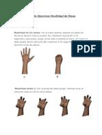Guía de Ejercicios Movilidad de Mano.docx