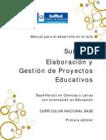 Manual Elaboracion Proyectos