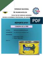 Informe de La Conserva