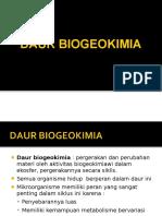 196152877 Daur Biogeokimia Ppt