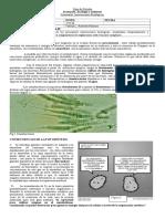 Guía- Innovaciones biologicas.
