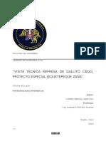 GALLITO CIEGO.docx