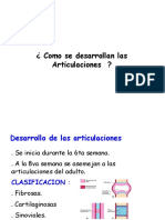 Embriologia de las Articulaciones