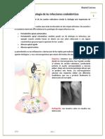 06.- Microbiología de Las Infecciones Endodonticas