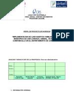 pERFIL hUERTOS.docx