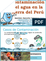 contaminacion del agua en la sierra del peru.pptx