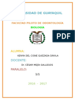 HISTORIA DE ANATOMÍA.docx