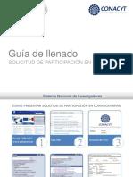 Guía de Llenado SNI-2014