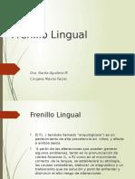 6 frenillo lingual