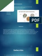 Presentación Organizacion y Direccion