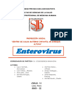 Enterovirus Proyeccion Social