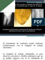 Conductometría Principios y Fundamentos Para El Tratamiento Endodóntico