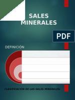 Sales Minerales