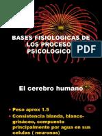 Bases Fisiologicas de Los Procesos Psicologicos1 (2)