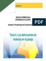 Los Delincuentes de Violencia en La Pareja