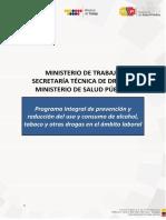 6.- PROGRAMA INTEGRAL.pdf
