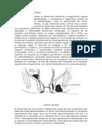 Fisiopatológica Ano (Absceso  y cáncer anal )