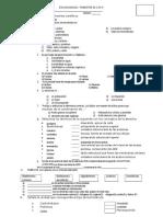 evaluacion I  trimestral I4° 2016.docx