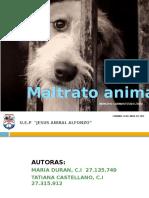 Maltrato Animal 1