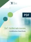 CAA Handbook