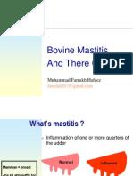 Bovine Mastitis and There Control