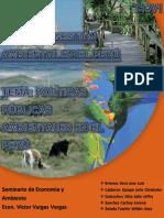 Politicas Publicas Ambientales