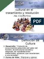 Lo Cultural 2015