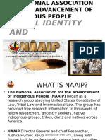 NAAIP PRESENTATION.pptx