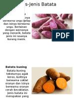 Jenis Jenis Batata