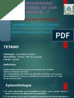 Tetano y Adenitis Equina